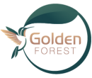 Golden Forest – Forest for All